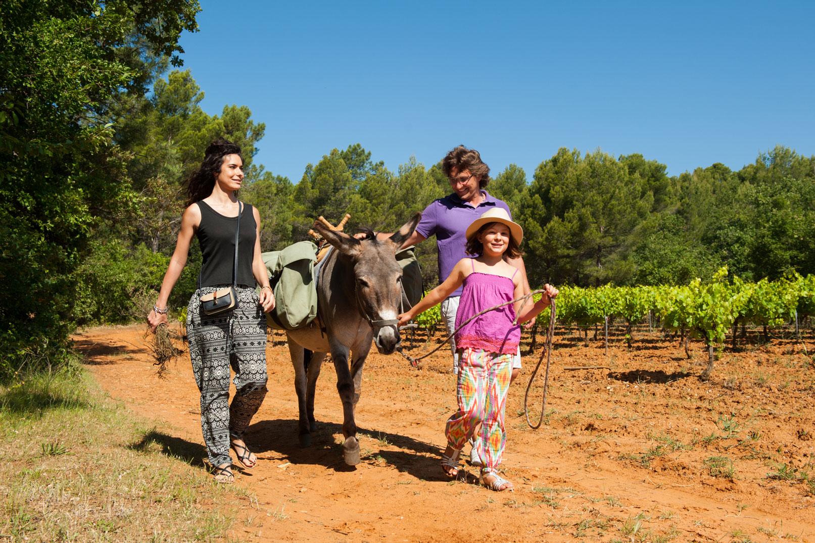 Paseos con los burros en Provenza @ Cintas Florès