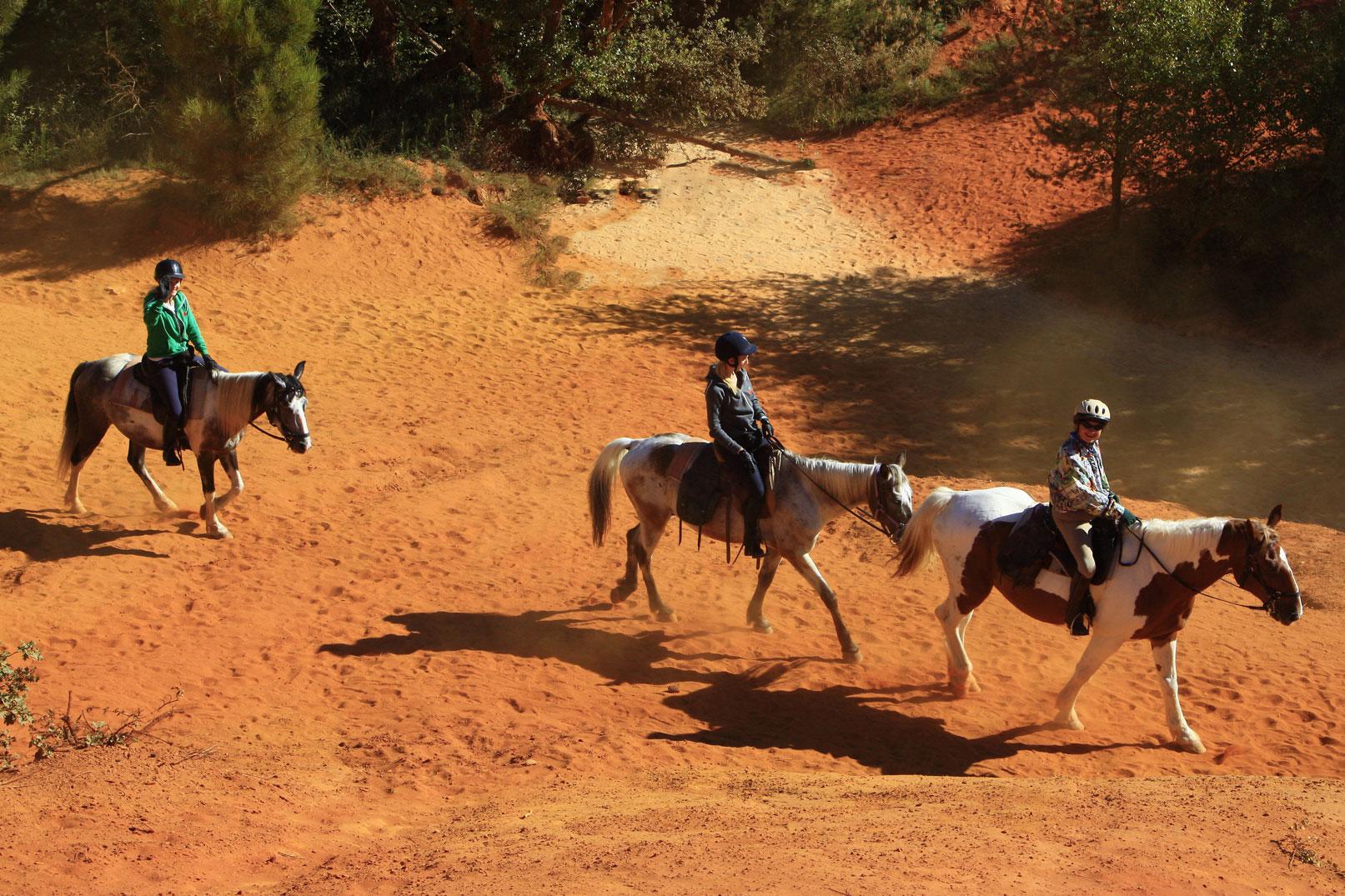 Paseos a caballo en Vaucluse @ Hocquel