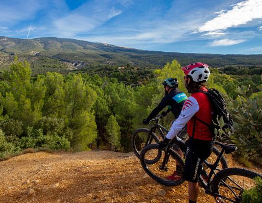 Bicicleta de montaña - Ventoux @ Hocquel
