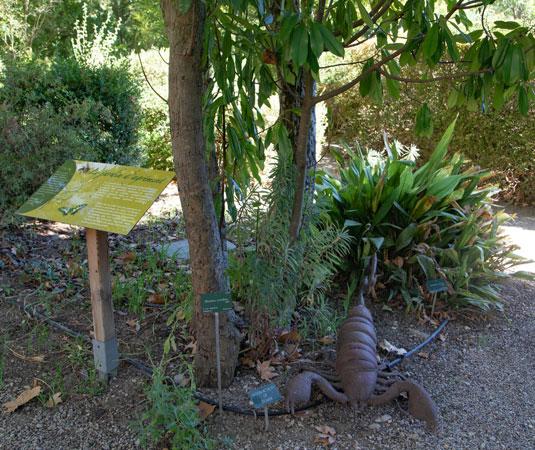 El sendero botánico de Uchaux-Sérignan