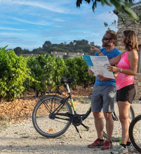 El Vino y el Valle del Ródano