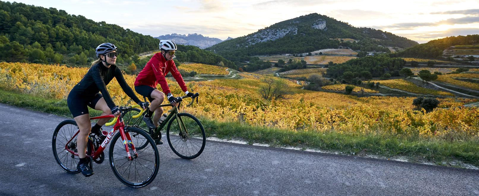 Viñedos y bicicleta: ¡Dúo Di-Vino!